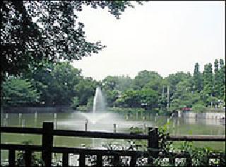 碑文谷公園
