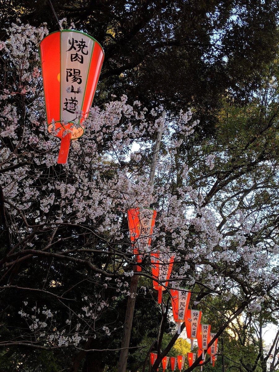 上野恩賜公園【お花見】