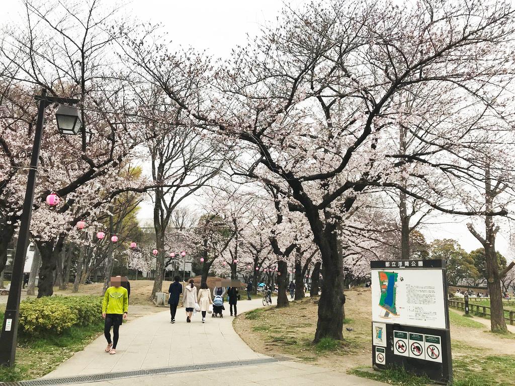 都立浮間公園【お花見】