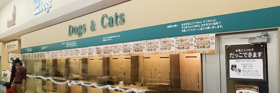 Pet's One-ペッツワン【カインズ行田店】