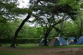 智光山公園野外活動広場(キャンプ場)