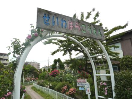 青和ばら公園
